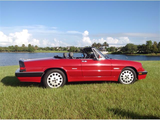 1986 Alfa Romeo Spider Quadrifoglio | 881729