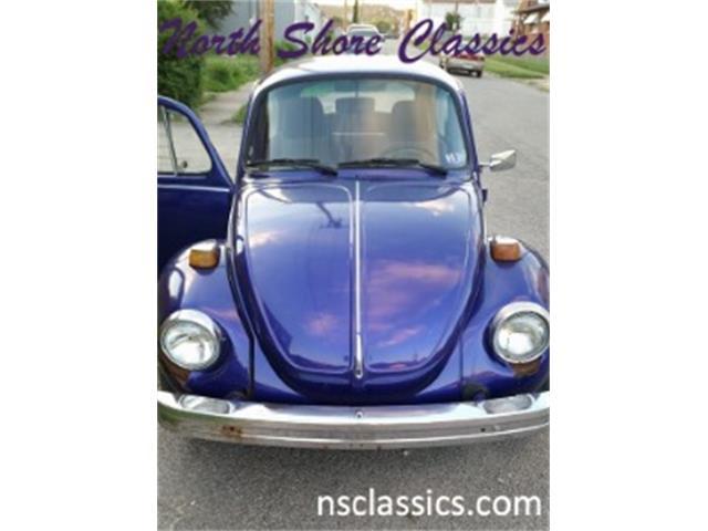 1975 Volkswagen Super Beetle | 881733