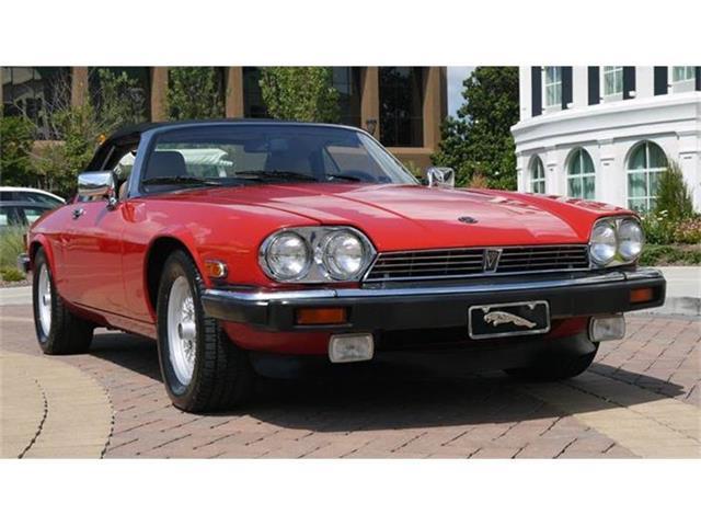 1989 Jaguar XJS | 884135