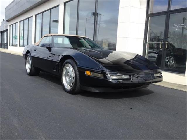 1995 Chevrolet Corvette | 884194