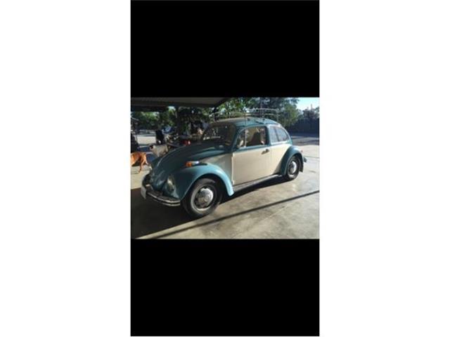 1971 Volkswagen Beetle | 884493