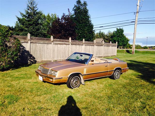 1984 Dodge 600 Series | 884923