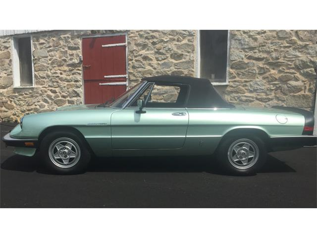 1985 Alfa-Romeo Spyder | 885469