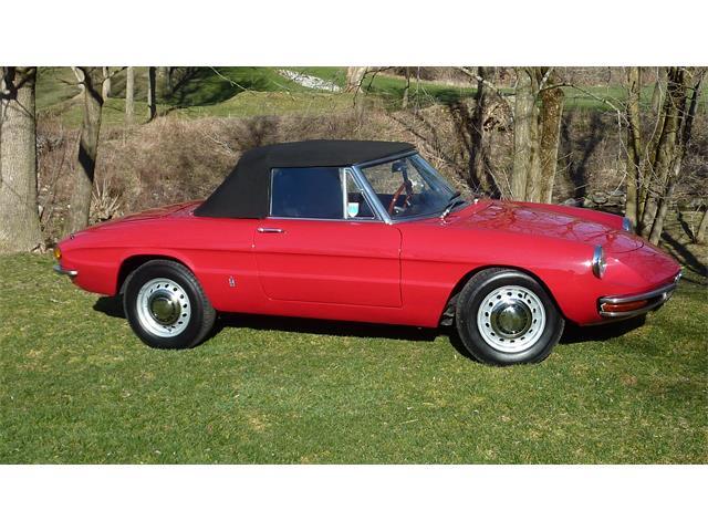 1969 Alfa Romeo Spider Veloce | 880876