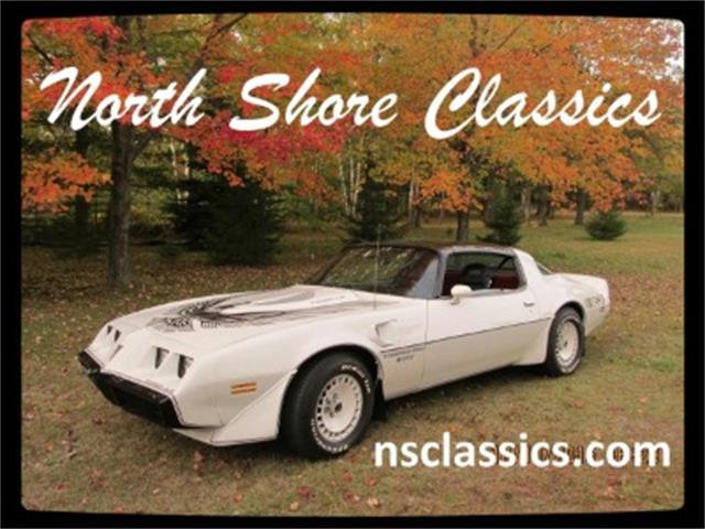 1981 Pontiac Firebird | 888869