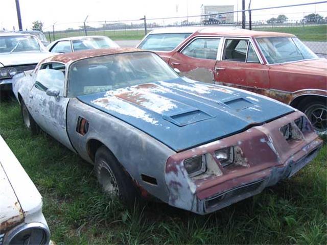 1980 Pontiac Firebird | 889218