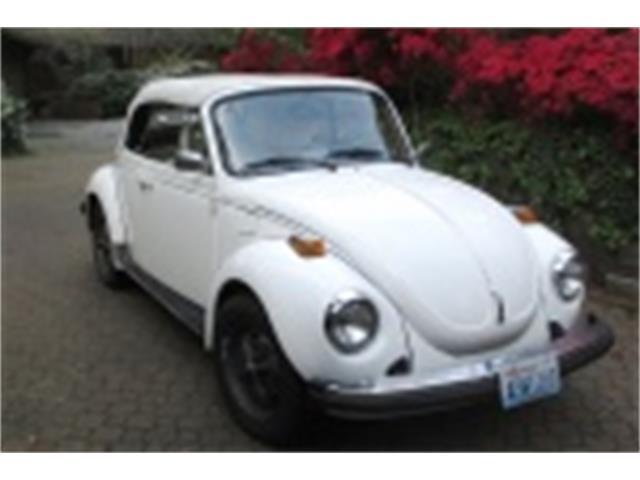 1979 Volkswagen Super Beetle | 889816