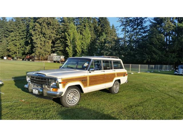 1989 Jeep Wagoneer | 892859