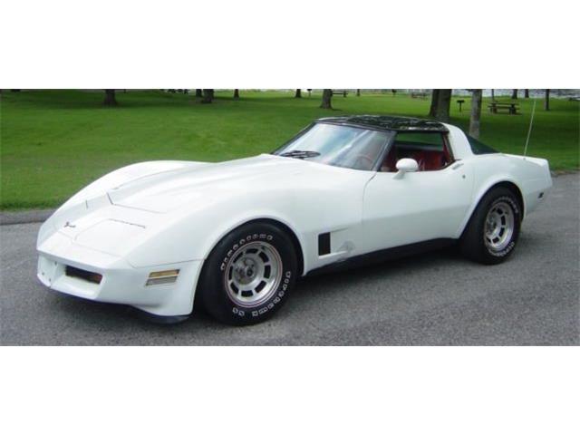 1981 Chevrolet Corvette | 893324