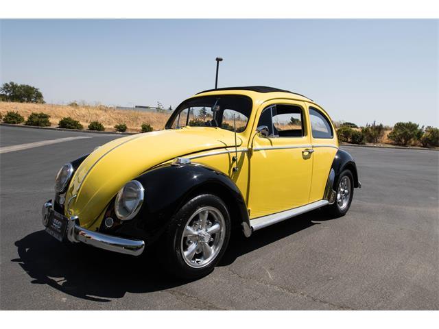 1960 Volkswagen Beetle | 893488