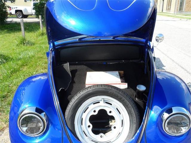 1965 Volkswagen Beetle | 893855