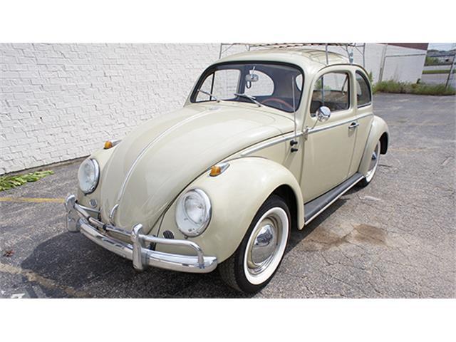 1964 Volkswagen Beetle | 890440