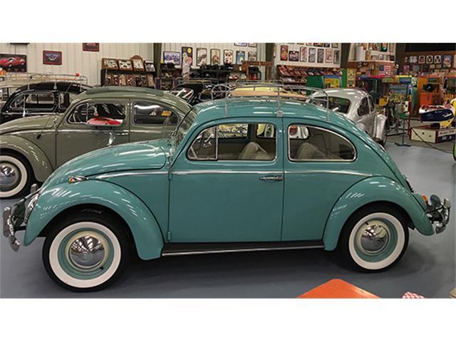 1964 Volkswagen Beetle | 894811