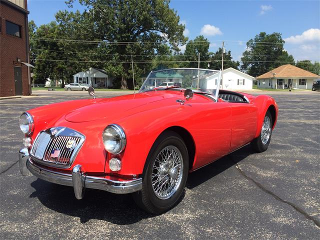 1955 MG 1500 A Roadster | 895542