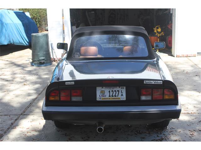 1987 Alfa Romeo 2000 Spider Veloce | 895578