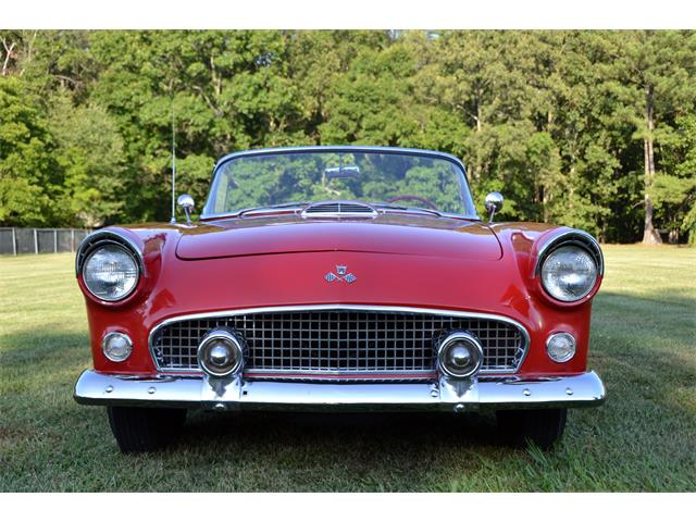 1955 Ford Thunderbird | 895673