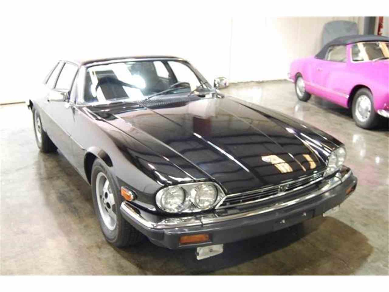 Large Picture of '84 XJS - J78Z