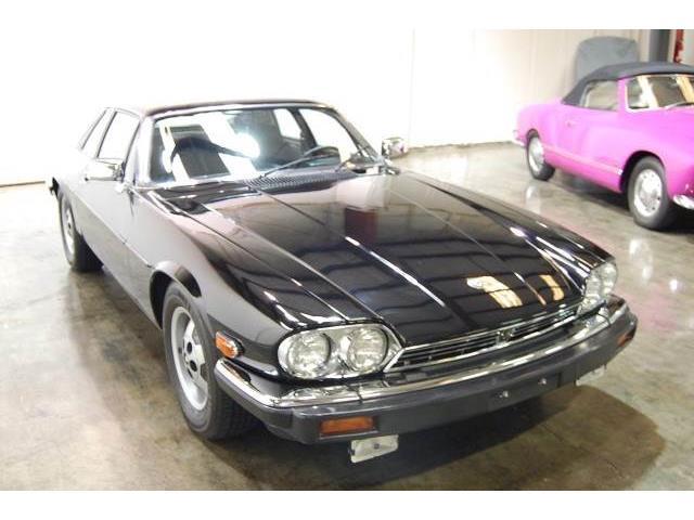 1984 Jaguar XJS | 895859