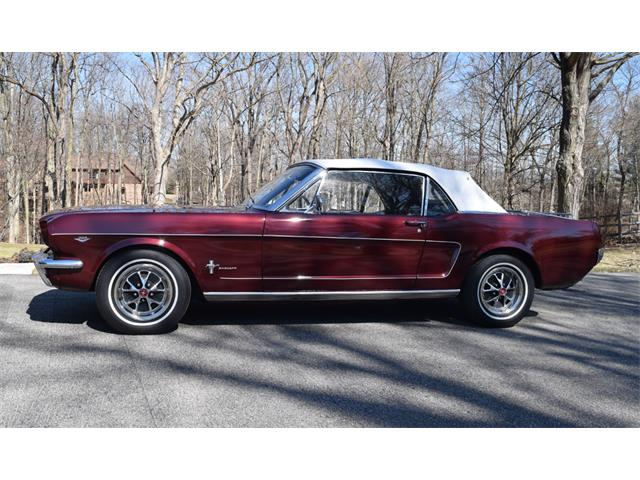 1966 Ford Mustang | 896105