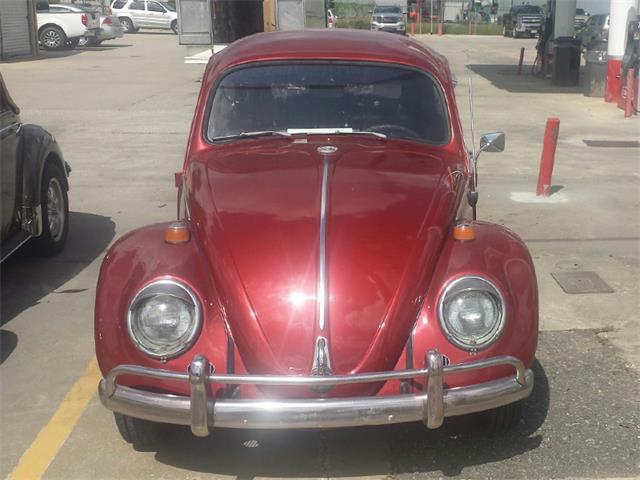 1964 Volkswagen Beetle | 896131