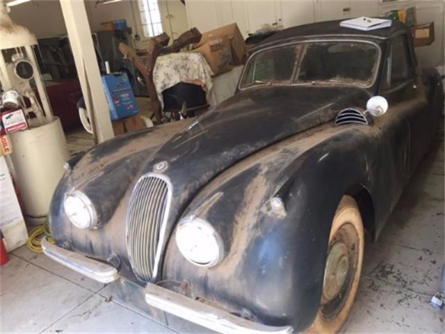 1954 Jaguar XK120 | 896445
