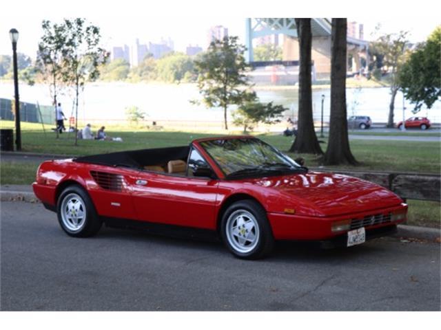 1986 Ferrari Mondial | 896446