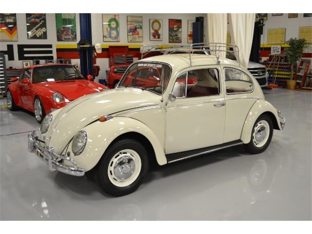 1966 Volkswagen Beetle | 890743