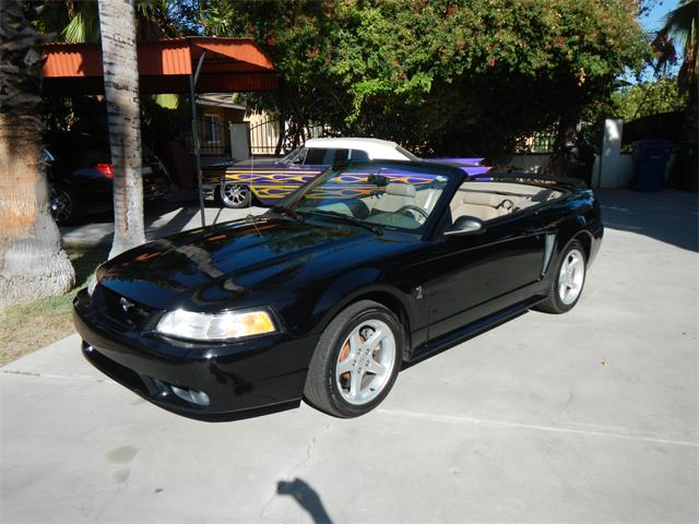 1999 Ford Mustang Cobra | 897471