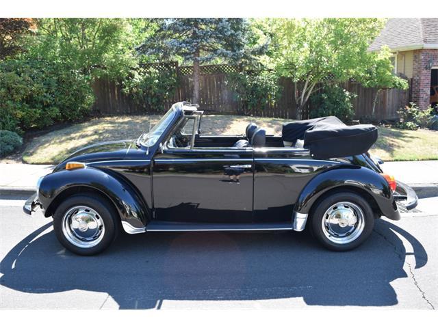 1979 Volkswagen Super Beetle | 897813