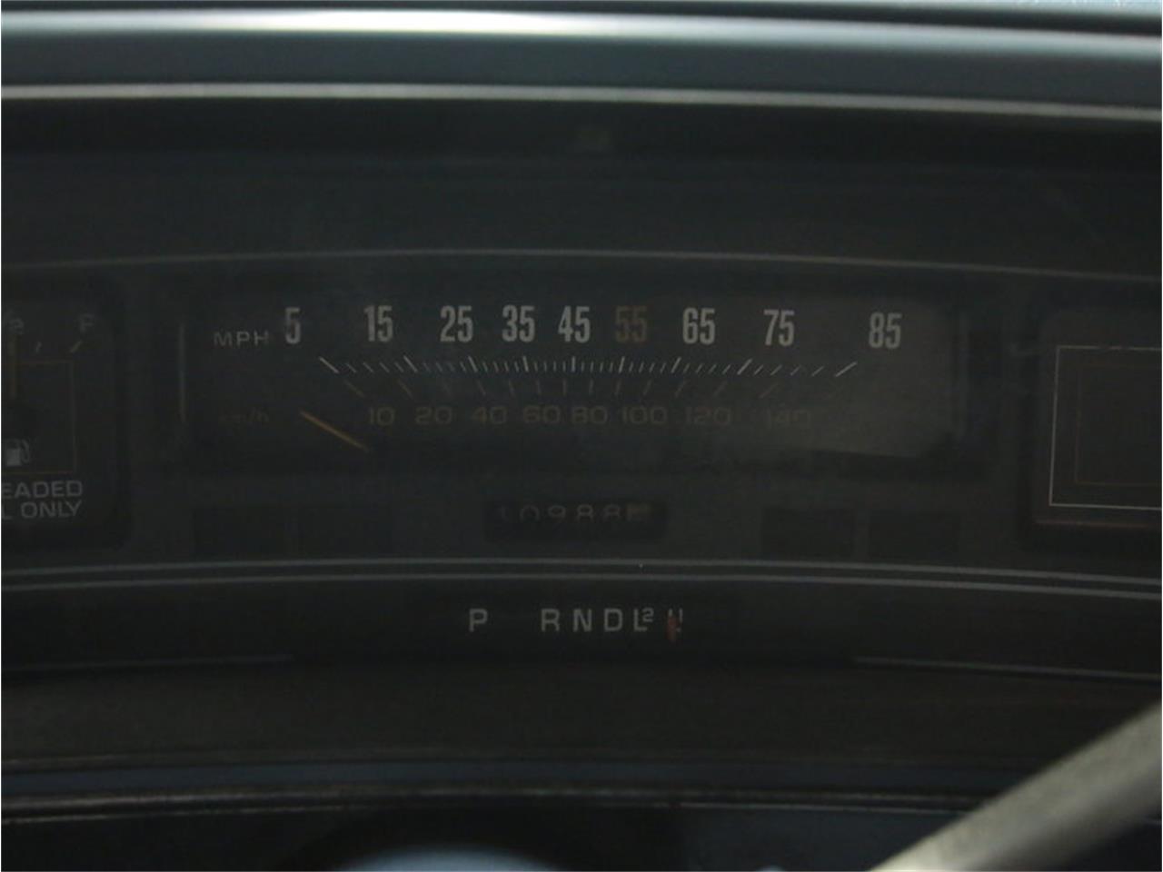 Photo 45