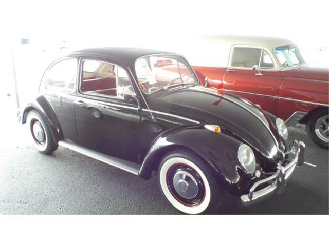 1966 Volkswagen Beetle | 899395