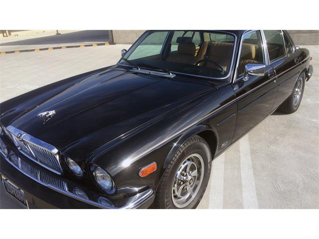 1987 Jaguar XJ6 | 901552