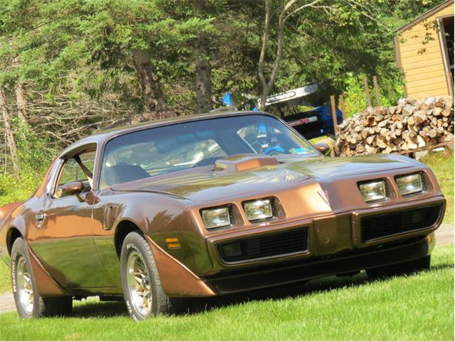 1979 Pontiac Firebird Trans Am | 902784