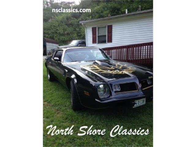 1975 Pontiac Firebird | 903593