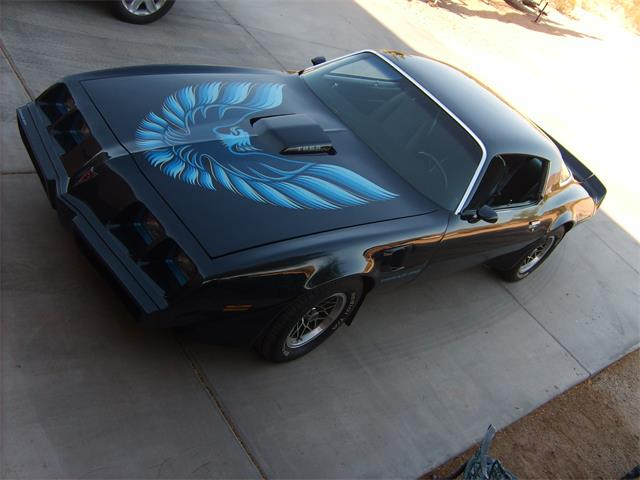 1981 Pontiac Firebird Trans Am | 904253