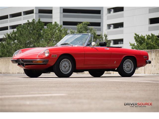 1971 Alfa Romeo Spider | 904803