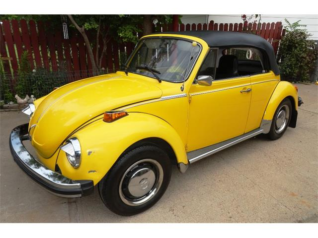 1975 Volkswagen Super Beetle | 905230