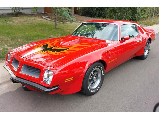 1974 Pontiac Firebird Trans Am | 905355