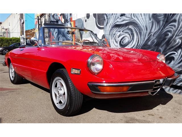 1971 Alfa Romeo Spider1 | 905632