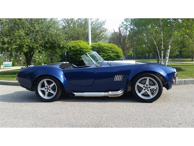1965 Shelby Cobra Replica | 900057