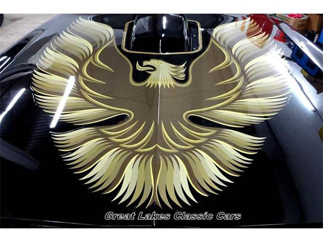 1981 Pontiac Firebird | 906216