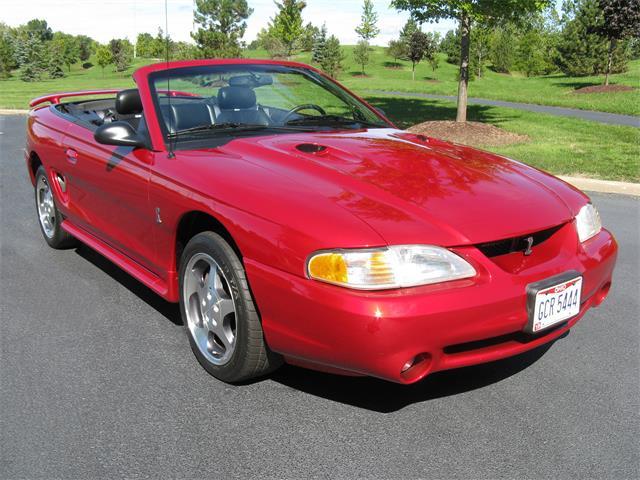 1996 Ford Mustang Cobra | 906685