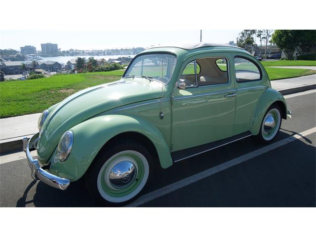1960 Volkswagen Beetle | 906703