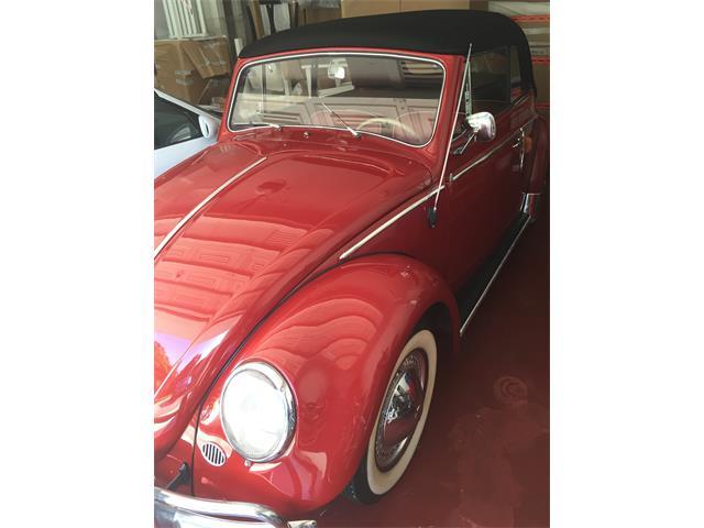 1958 Volkswagen Cabriolet | 900911