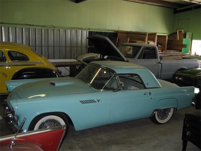 1955 Ford Thunderbird | 909963