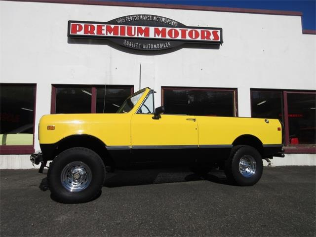 1976 International Scout | 912267
