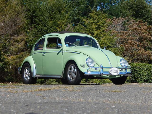 1956 Volkswagen Beetle | 913076