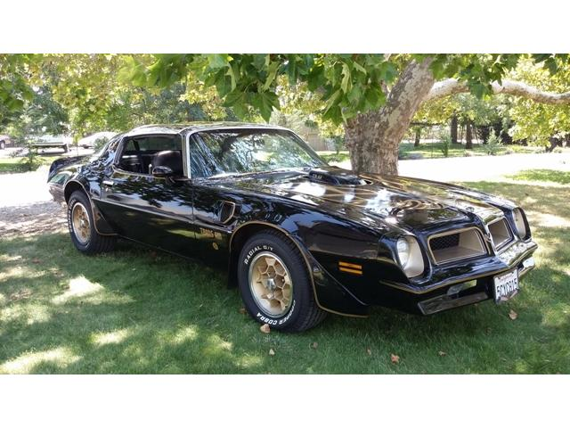 1976 Pontiac Firebird Trans Am | 913393