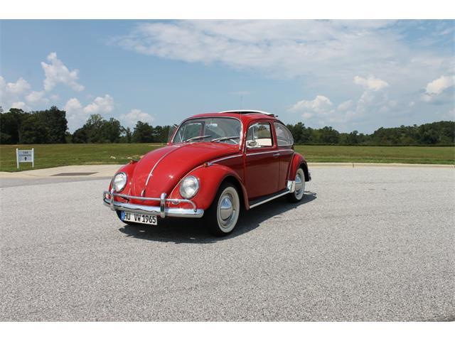 1965 Volkswagen Beetle | 913542