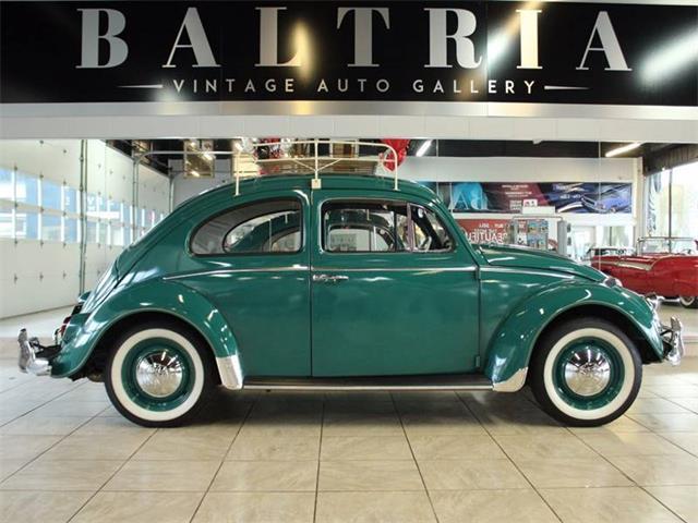 1964 Volkswagen Beetle | 913903